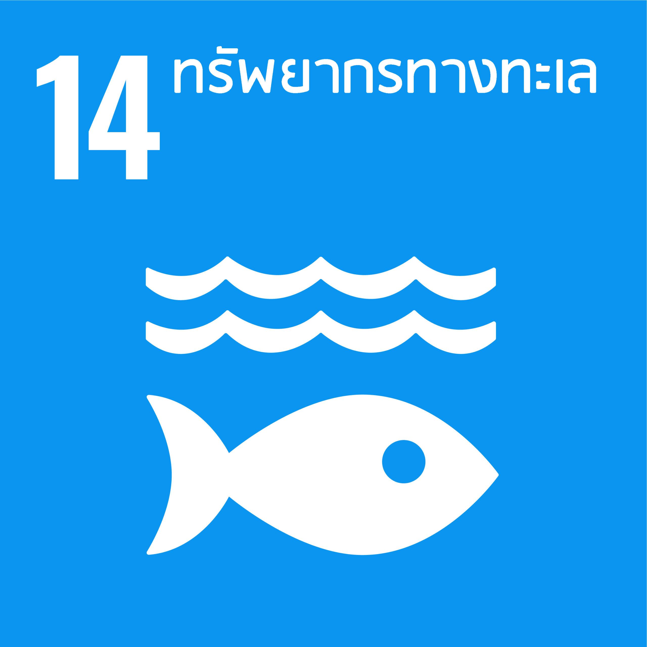 E_SDG_PRINT-14